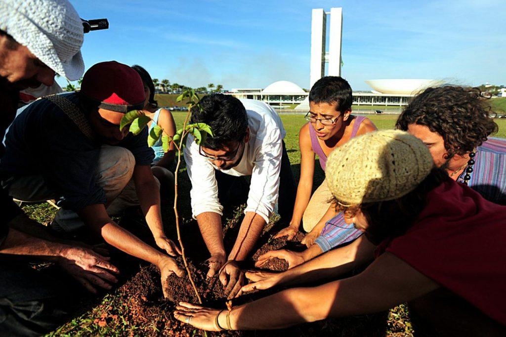 Imagem: Ambientalistas fazem manifestação em Brasília